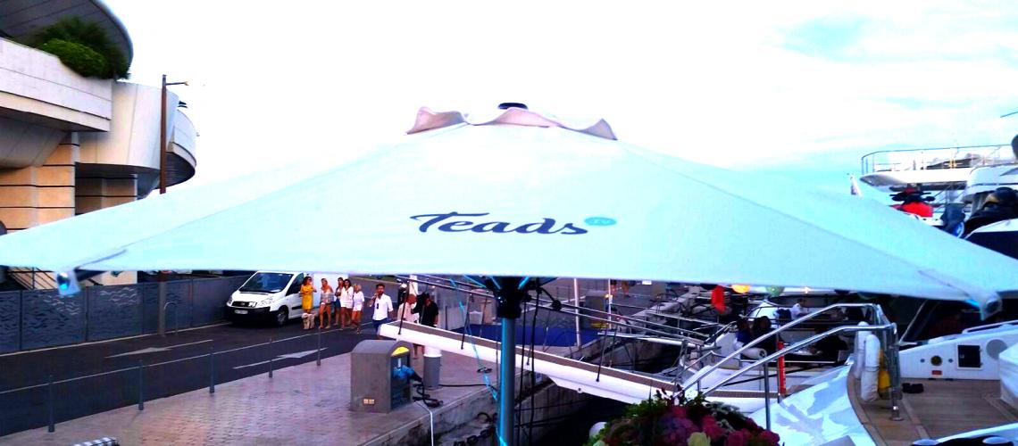 T umbrella